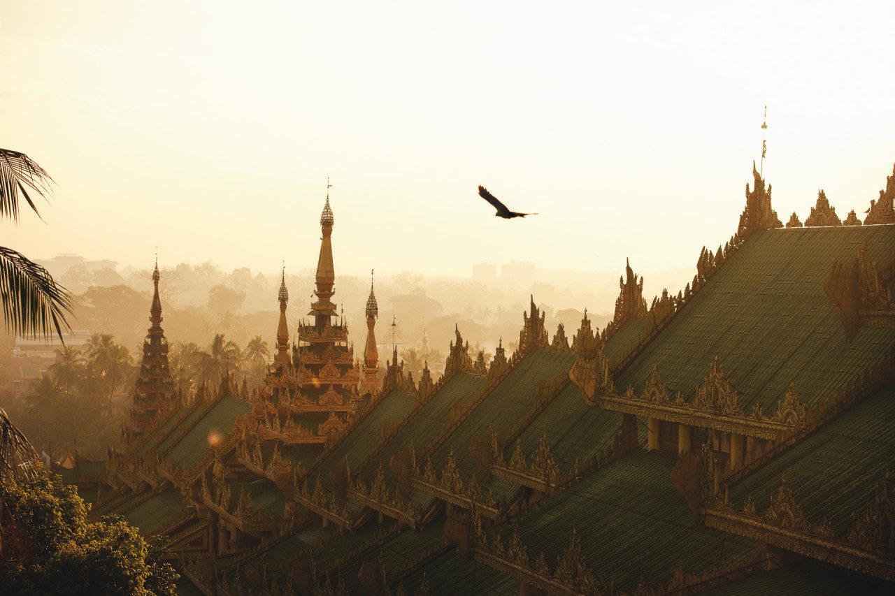 Vogel fliegt über Daecher Tempelanlage Myanmar Fotostory von Nils Junker