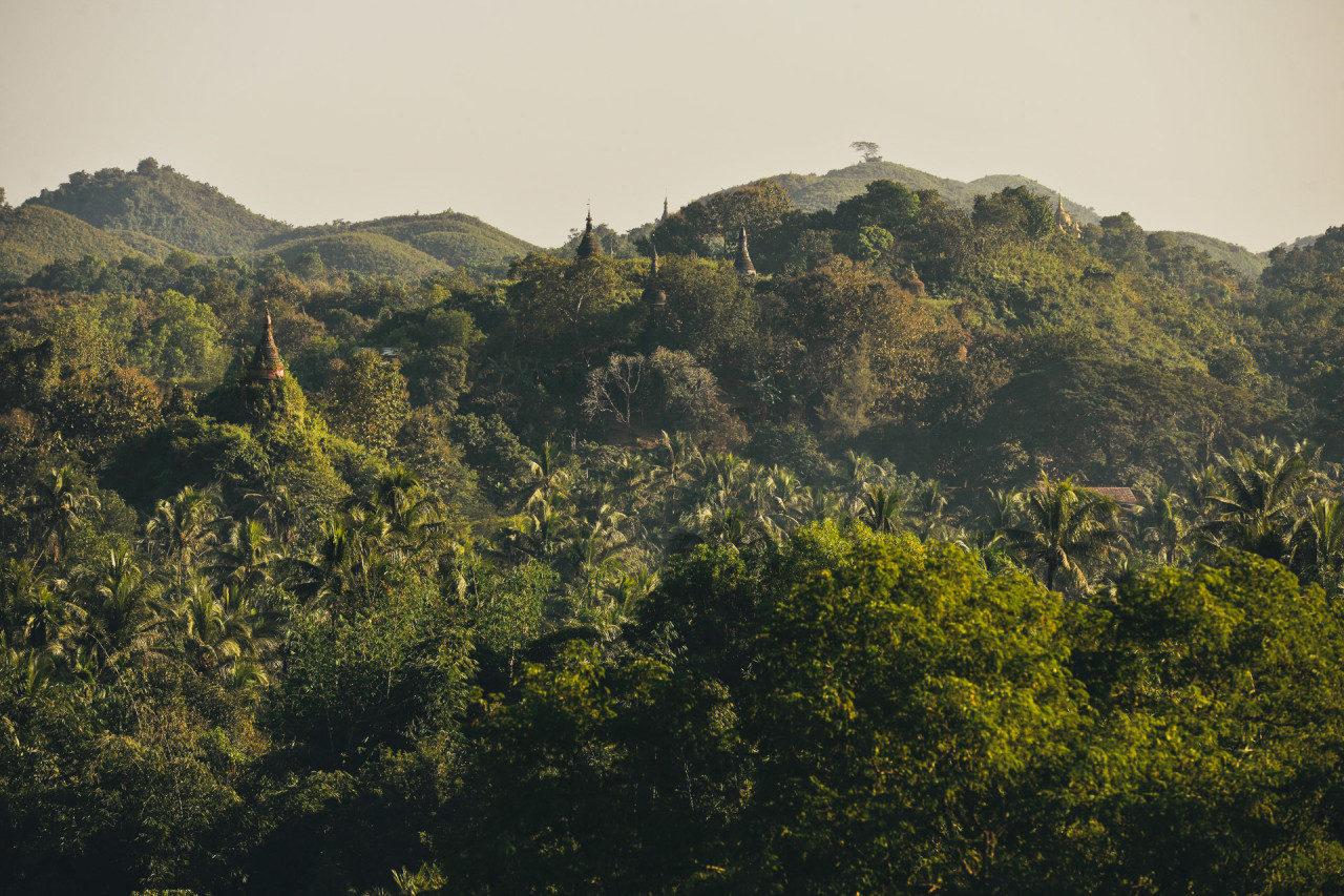 Dschungel Tempeltürme Fotostory von Redeleit und Junker