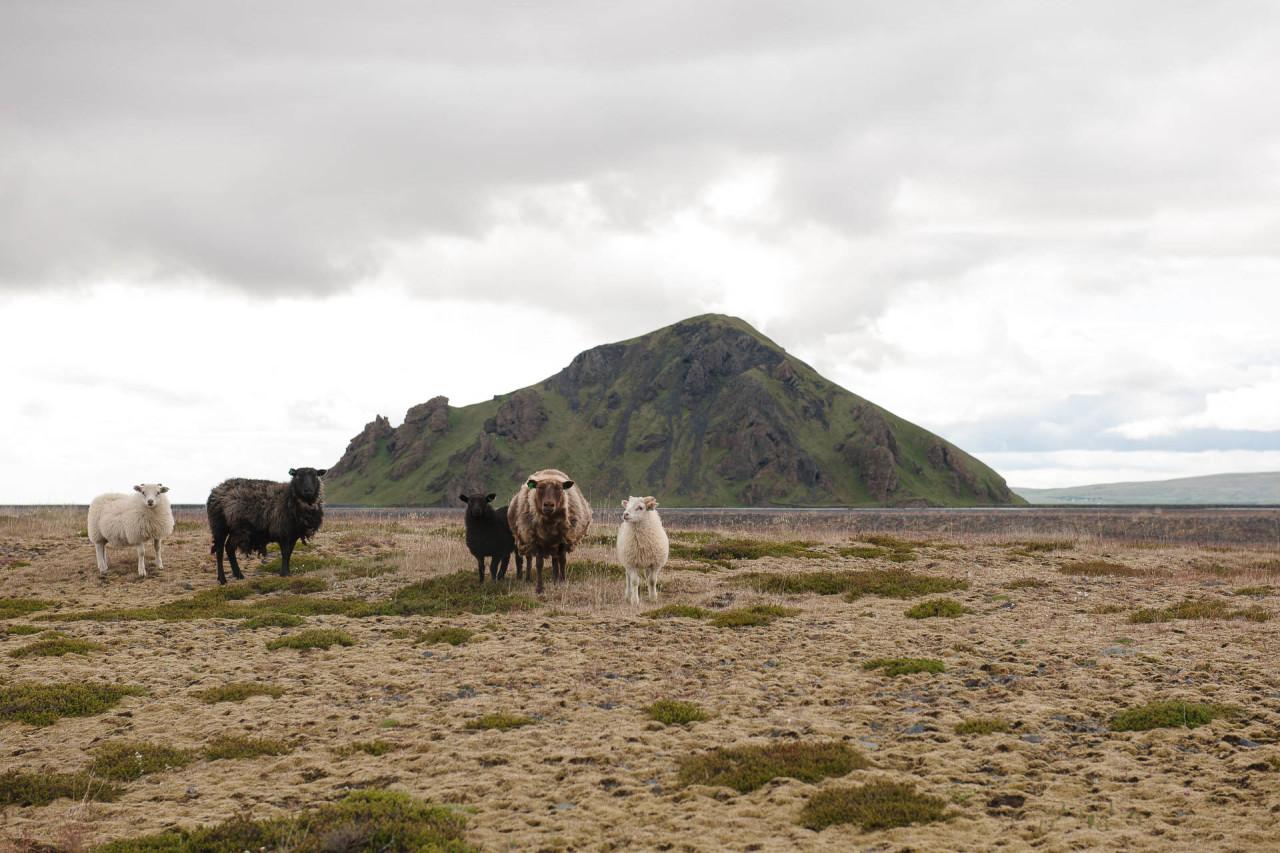 Fotostory von Redeleit und Junker - Scharfe in Island